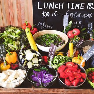 【沖縄・石垣】リゾート気分で働こう 地元野菜のイタリアン